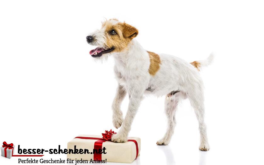 Geschenke für den Hund